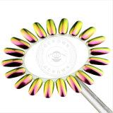 Glänzendes Chamäleon-Spiegel-Chrom-Funkeln-Puder-UVgel-Polnisch-Pigment