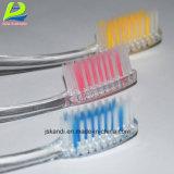 Doppelte transparente erwachsene Zahnbürste