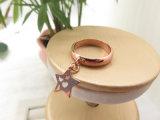 El oro verdadero sobre fabricante de vinos cuelga el anillo hueco de la joyería del metal de la estrella