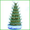 Lucky Bamboo (Dracaena reflexa)