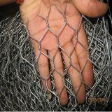 지상 편평한 직류 전기를 통해 및 PVC는 방어하거나 검술하기 위하여 이용된 6각형 철망사를 입혔다