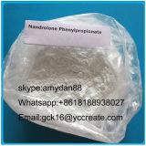 Сырцовый стероидный Nandrolone Phenylpropionate 62-90-8 Durabolin порошка для усиливает мышцу