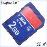 Gute Qualitäts2gb Ableiter-Hochgeschwindigkeitscodierte Karte (statischer Ableiter 2GB)