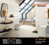 300X900mm glasierten rustikale keramische Wand-Innenfliese für Haus Deco