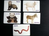 Таможня цвета /Full внезапных карточек животных (36cards) играя карточки игры