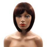 8インチのStyle Synthetic Lace Wigs短いボブのオフィスの女性