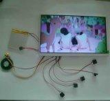 módulo do cartão video da tela de 7inch LCD com espuma de EVA