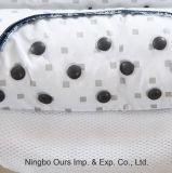 Cuscino di salute disposto seme della cassia & del magnete