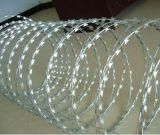 Tipo trasversale a fisarmonica galvanizzato tuffato caldo fornitore della Cina del filo del rasoio