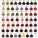 OEM/OEM Salon-Marken-nicht allergische 62 Farben-Farbton-Haar-Farben-Farbe