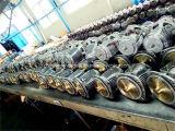 庭の使用のための鋳鉄1.1kwの自己の起爆剤のジェット機ポンプ