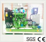 Recipiente Grande Potência Silenciosa 35kw conjunto gerador de gás natural