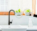NSF61 стандарта потянуть вниз под струей горячей воды на кухне