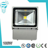 Waterproof extérieur IP65 Bridgelux COB 100W DEL Floodlight