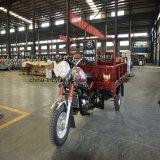 La entrega tres ruedas de bicicleta de carga Trike para la granja o campamentos