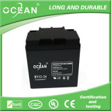 中間のSize Capacity Ocean 12V 24ah Lead Acid Battery Rechangeable Battery SMF Battery