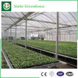 수경법 시스템을%s 가진 다중 경간 야채 또는 정원 또는 꽃 플레스틱 필름 온실