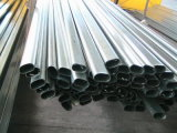 Commercio all'ingrosso galvanizzato/tubo acciaio di Pregalvanized