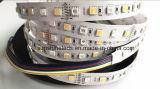 SMD5050 360LEDs RGB+Double 색깔 Ww&Pw 5 색깔 LED 지구