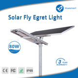 Angeschaltene IP65 Solarstraßenbeleuchtung des Patent-LED