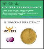 Hot Slaes Ingrédient cosmétique: Extrait d'ampoule Allium Cepae
