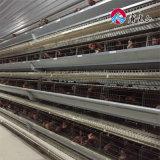 4 клетки батареи цыплятины цыпленка слоя ярусов для нигерийской фермы