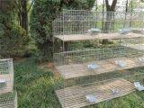 Клетка кролика высокого качества для ферм