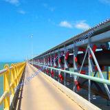 Hightech- Langes-Distance Curved Belt Conveyor für Sale