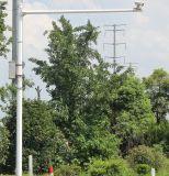 Macchina fotografica Palo d'acciaio galvanizzato video del segnale stradale con il braccio lungo