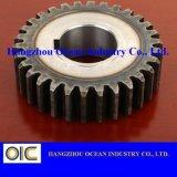 Attrezzo di dente cilindrico d'acciaio di formato standard