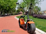 Vespa eléctrica de Harley de la aprobación del EEC de la alta calidad 60V 12ah Citycoco