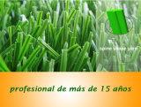 Het Kunstmatige Gras van het Gebied van de voetbal, het Gras van het Hof van het Voetbal, het Gazon van het Voetbal, het Gras van het Voetbal met SGS, Ce- Certificaat