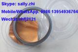 Verbinding van de Olie van de trapas de AchterC02ab-9y9895 voor Shangchai Motor C6121