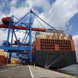 Gebildet im China-Offshoreportportalkran auf Lager