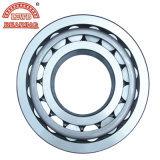 Shandong usine certifiée ISO Roulement à rouleaux cylindriques avec prix favorable