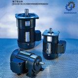 Vertikaler kleiner Wechselstrommotor für Maschine/Equipment_C