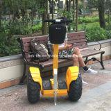 Motorino elettrico di golf del vagabondo del vento