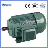 Yjt 시리즈 고품질 삼상 AC 전기 Motors0.75kw ~ 315kw