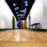 Plancher recouvert de vinyle de feuille libre de COV pour la décoration d'accueil