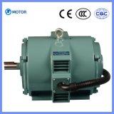 Motor de Asidrônio Trifásico do Compressor de Parafuso da Série Ly (IP23)