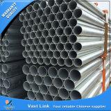 Tubo d'acciaio galvanizzato tuffato caldo per la serra