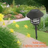 Lampada solare del prato inglese della decorazione del giardino
