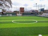 Gras van het Gras van het Hof van het basketbal het Kunstmatige