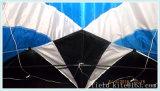 De promotie Vlieger van de Stunt van Weifang Vlieger China