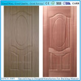 Teck et peau en bois normale de porte de contre-plaqué de taille de porte de Sapelli