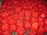 Ingeblikte Rode Paprika in Water