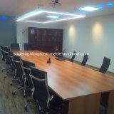 Sistema di illuminazione chiaro lineare di Pednant della camera di equilibrio dell'ufficio LED