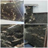 Brasil Cosmic Black Cosmos Black Matrix Titanium Prada Gold Granite