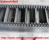 Ep800 4 산업 사용된 원형 끝없는 측벽 고무 컨베이어 벨트