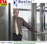 ISO9001passenger besichtigender Haupthöhenruder-Landhaus-Aufzug ohne Maschinen-Raum